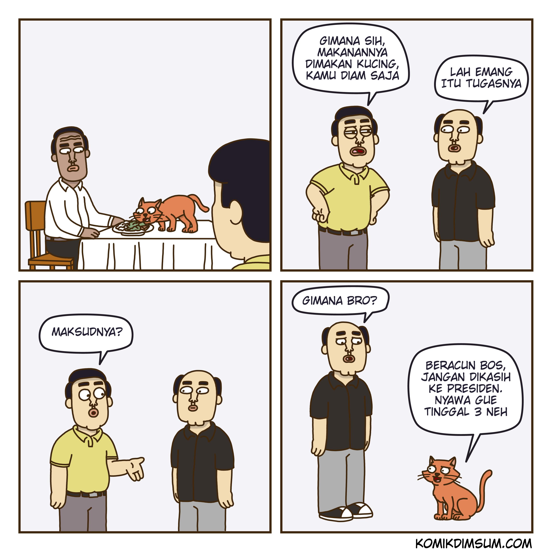 Dimakan Kucing