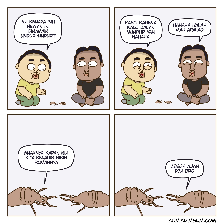 Undur Undur