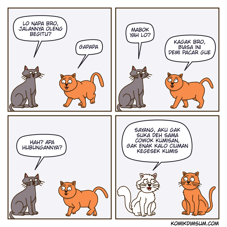 Kucing Bucin